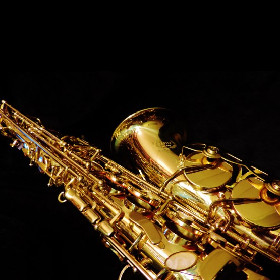 Castle CAS-LACT-L Alto Saxophone